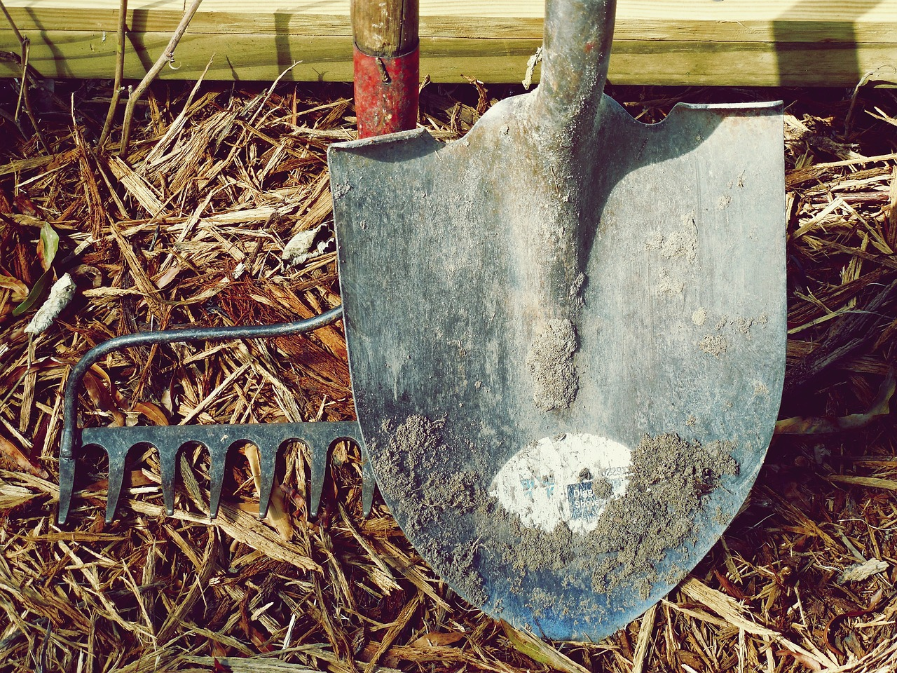7 Garden Equipment Every Newbie Demands